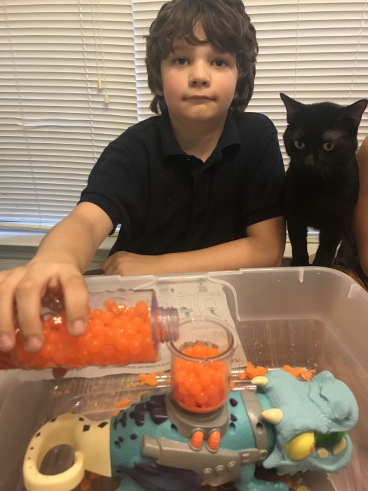Zorbeez Sensory Toy 2017 and black cat!